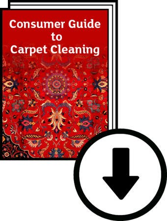 Download free consumer guide to carpet cleaning